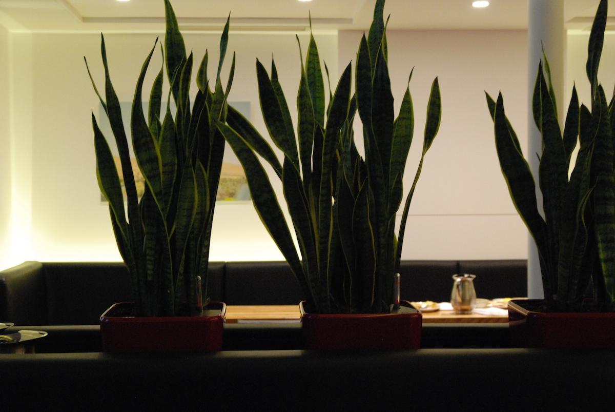 restaurant H4C 14