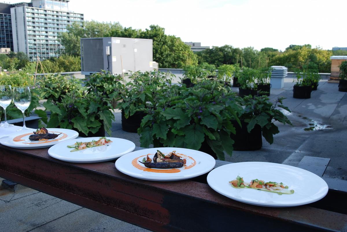 micro_habitat_restaurant_park_querelles_27